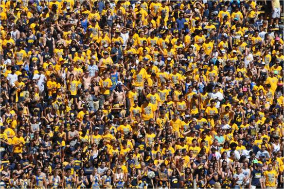 Cal Student Section