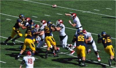 Cal v. WSU -- Bears Defending Against the Pass