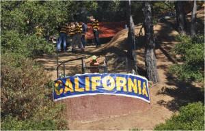 Cal Cannon
