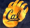 Cal Bear Paw Logo