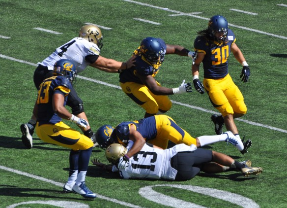 Cal Defense Brings Down Colorado's QB
