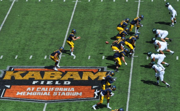 Cal Bears on Offense