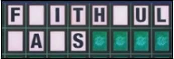 Faithful Fans 4 blanks