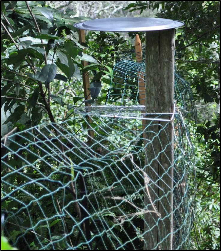 frasier-escape-proof-fencing
